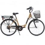 Vélos Electriques 2 roues