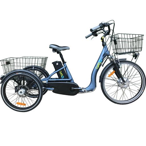 Vélo électrique 3 roues 14Ah démarrage 6km/h à différentiel frein disque autonomie 80km