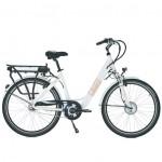 Vélo Electrique NEOMOUV Car16Ah Nexus 7 Autonomie 110km