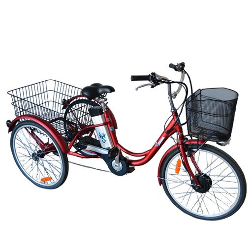 Vélo électrique 3 roues 10Ah à différentiel frein disque autonomie 50km