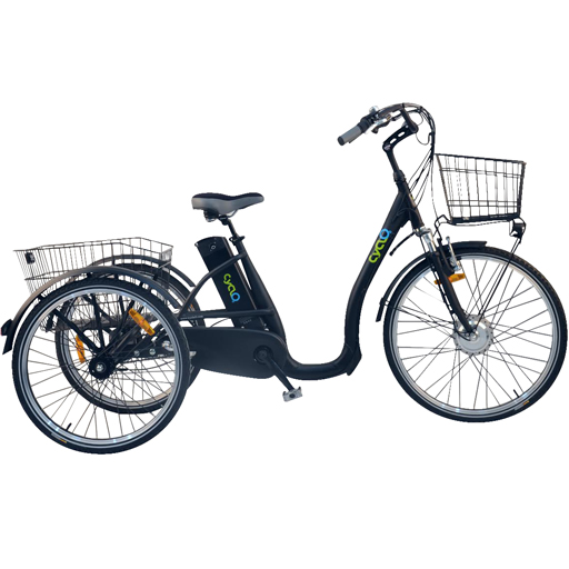 Vélo électrique 3 roues 10Ah fourche suspendue démarrage 6km/h autonomie 55km