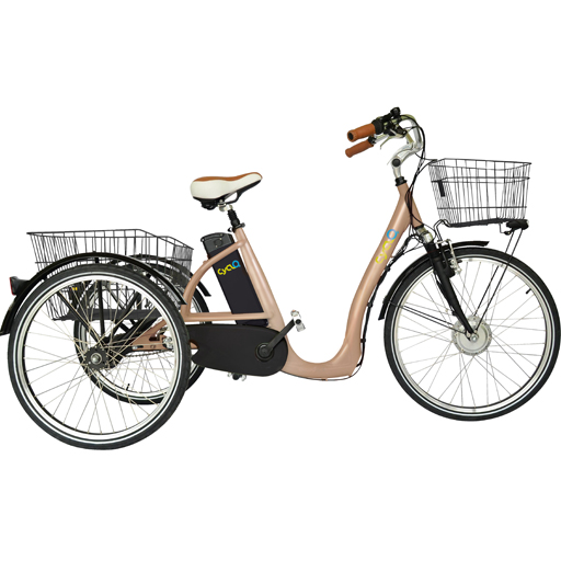 Vélo électrique 3 roues 10Ah fourche suspendue démarrage 6km/h autonomie 50km